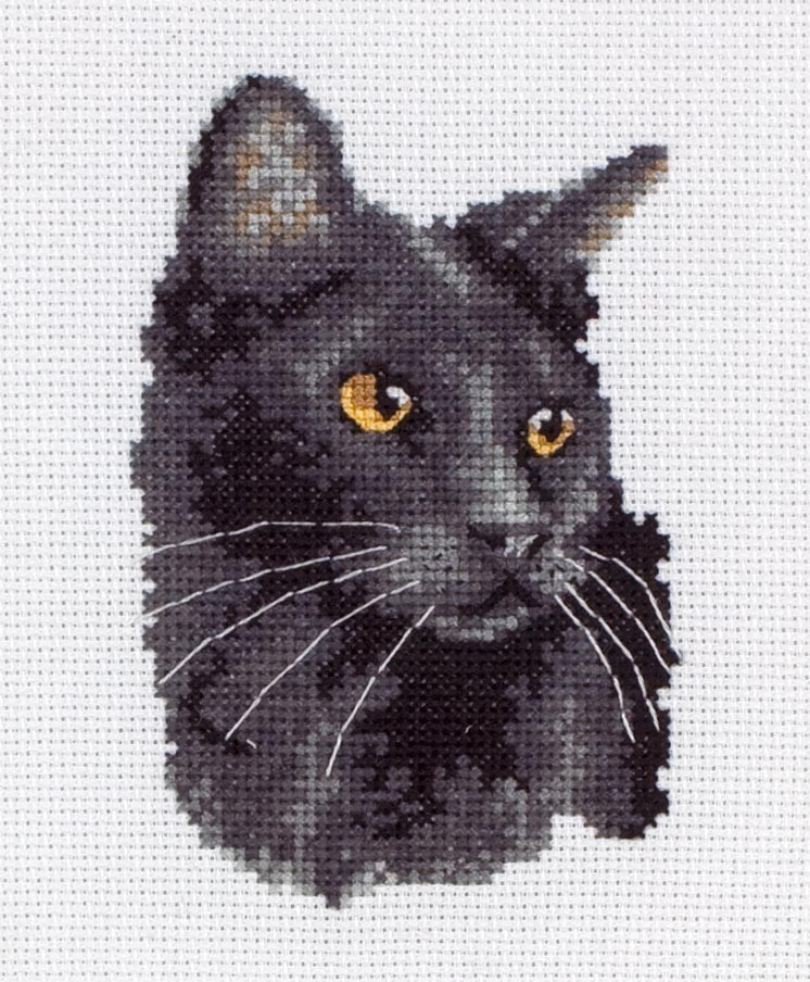 stitch save balance what s this black cat you are here cross stitch ...