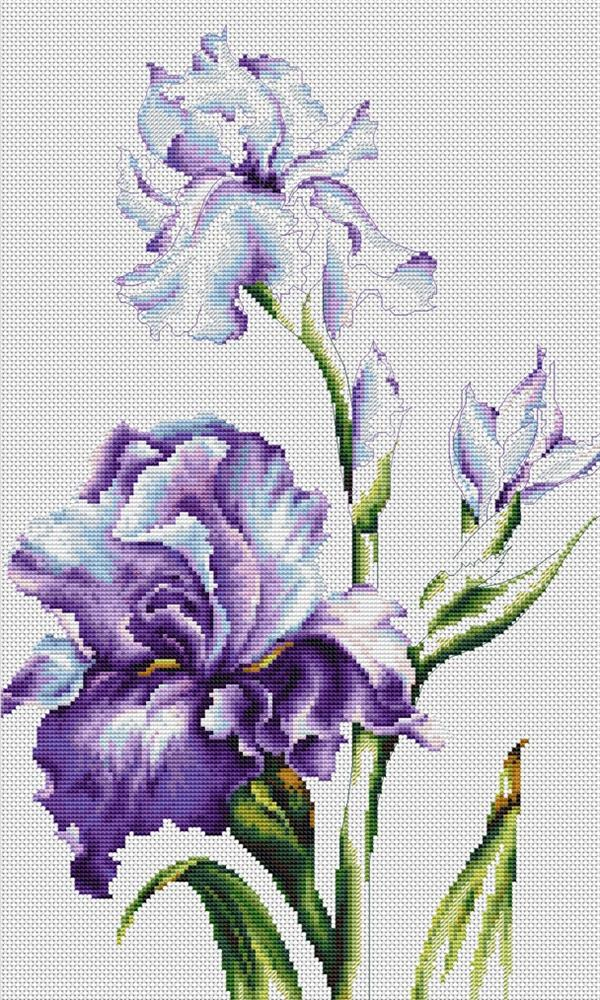 your stitch save balance what s this irises you are here cross stitch ...