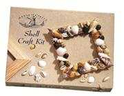 Starter Shell Craft Kit