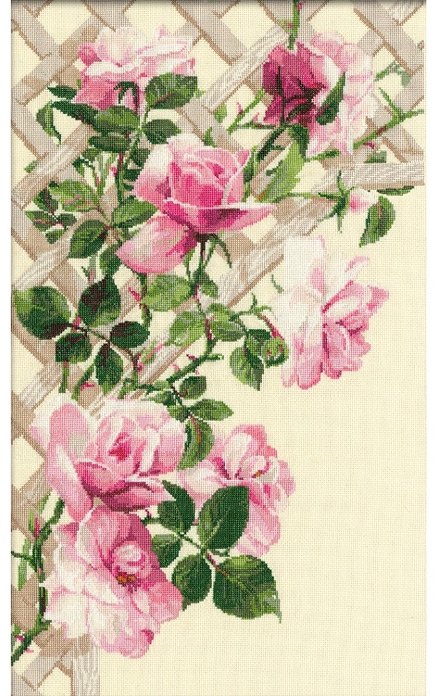 Pink Roses on Lattice
