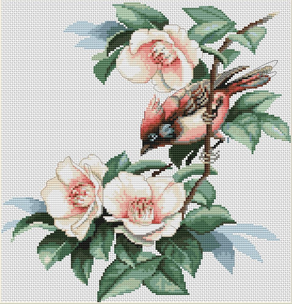 Bird in Flowers